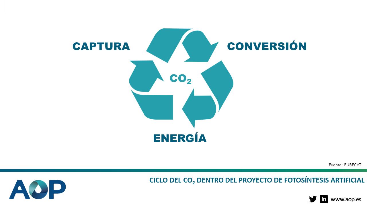 Ciclo del CO2 dentro del proyecto de fotosíntesis artificial